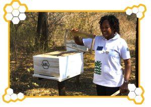Donna Africana con arnia per progetto di apicoltura CEFA