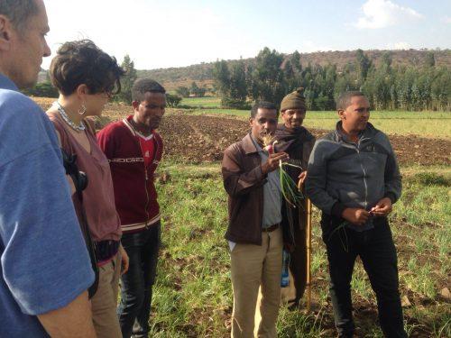 Coordinatore Paese – Etiopia