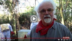 Patrizio Roversi racconta i progetti di sviluppo e apicoltura in Africa di CEFA ONLUS