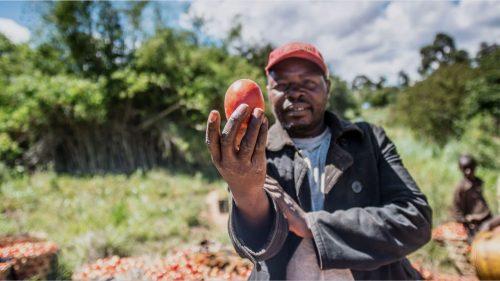Vincere la malnutrizione a Kilolo in Tanzania